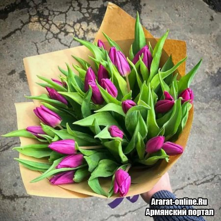 Как купить тюльпаны с доставкой и правильно их подарить